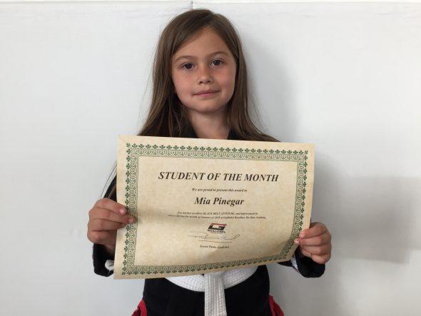 martial art school kids award